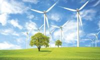 O nouă companie a intrat pe piaţa locală de energie. Preţurile sunt cu 30% mai mici.
