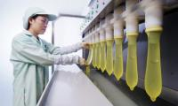 Fabrica de prezervative.