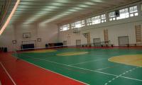Salile de sport, investitiile lui Cuclea.
