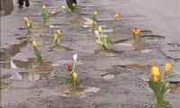 Vestitorii primaverii - gropile din asfalt.
