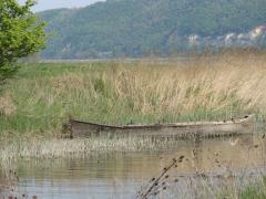 Peisaj de la varsarea Oltului in Dunare