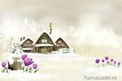 Zăpadă şi ghiocei.